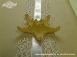 morska zvijezda detalj krem knjige dojmova