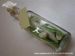 poruka u boci kao pozivnica za vjencanje