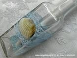 pozivnica za vjenčanje morska sa školjkom i perlicama