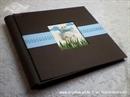 Foto album - Medo u šumi blue